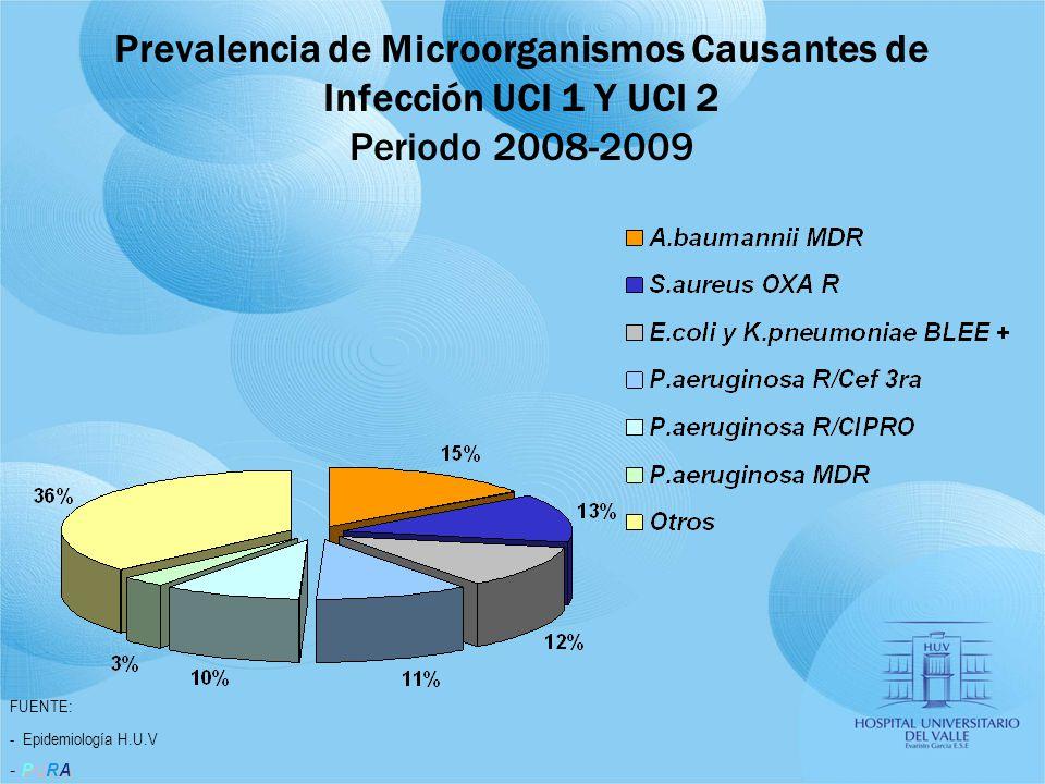 Prevalencia de Microorganismos Causantes de Infección UCI 1 Y UCI 2 Periodo 2008-2009