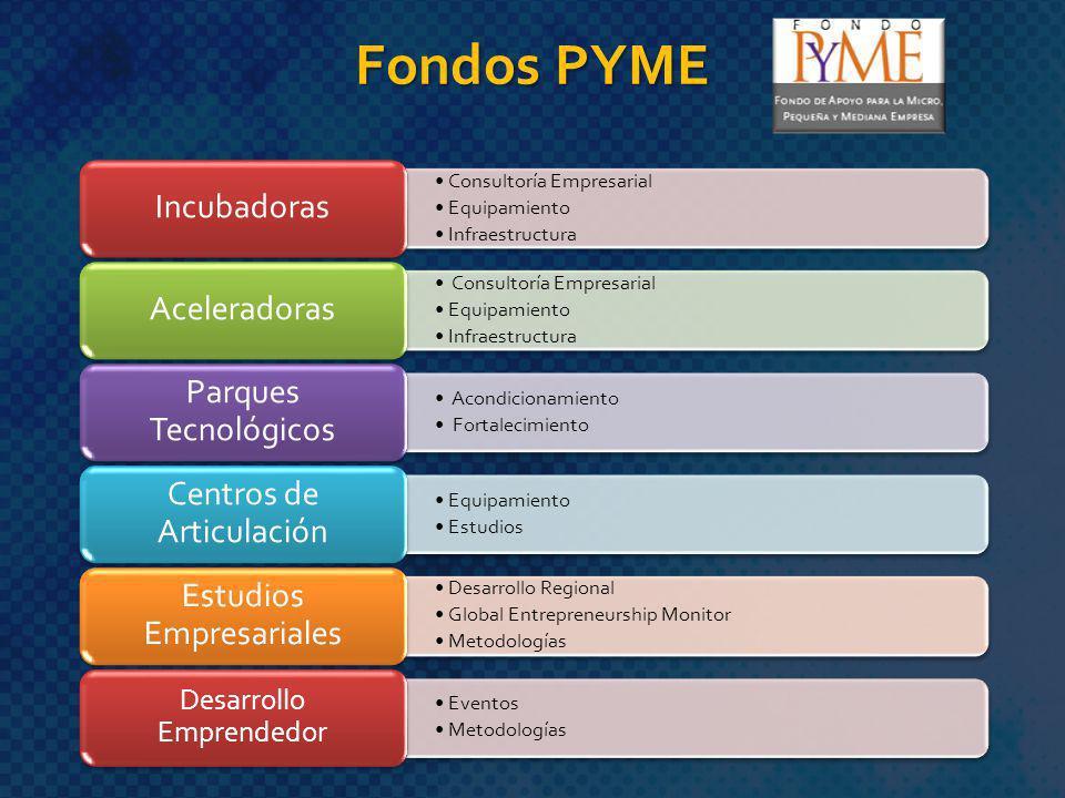 Fondos PYME Desarrollo Emprendedor Consultoría Empresarial