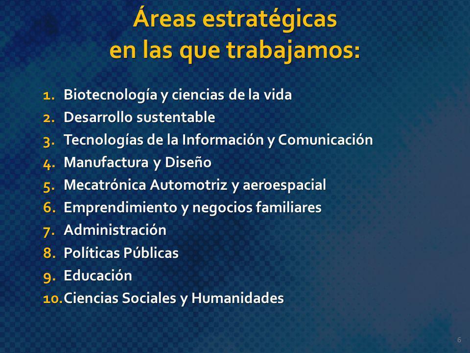 Áreas estratégicas en las que trabajamos: