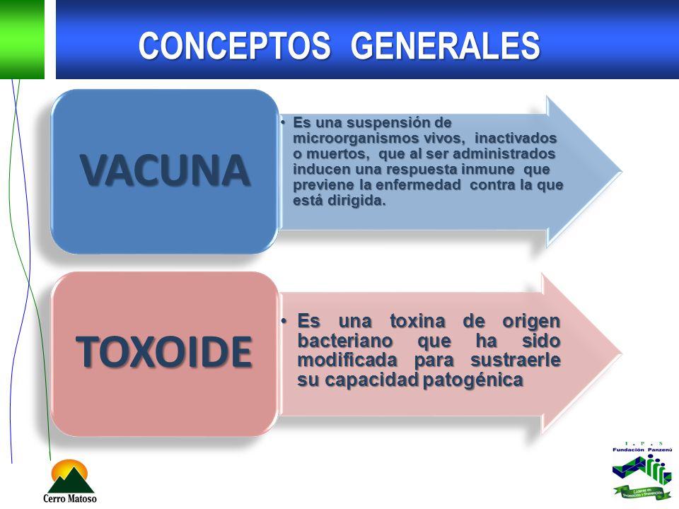 VACUNA TOXOIDE CONCEPTOS GENERALES