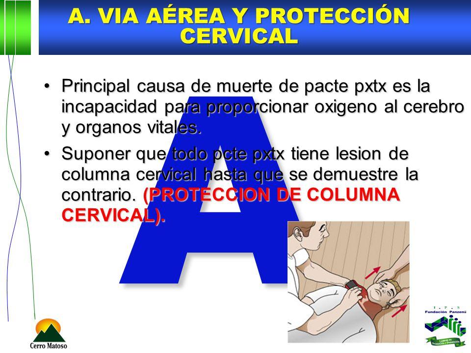 A. Via Aérea y protección cervical
