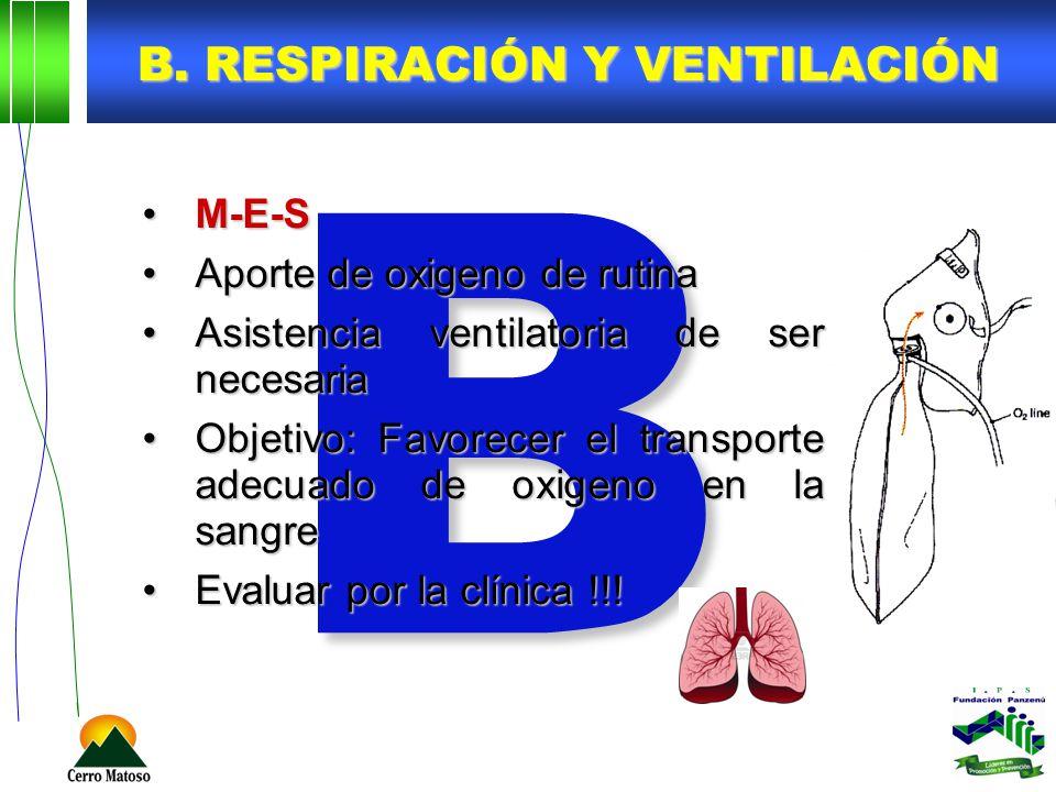b. Respiración y Ventilación