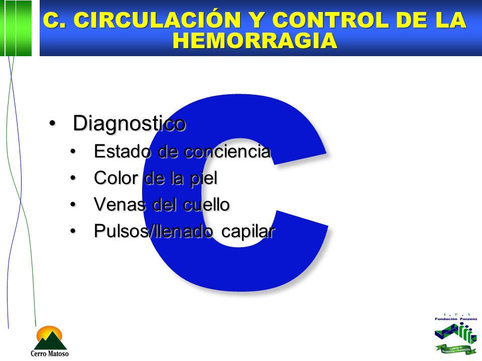 C. Circulación y control de la hemorragia