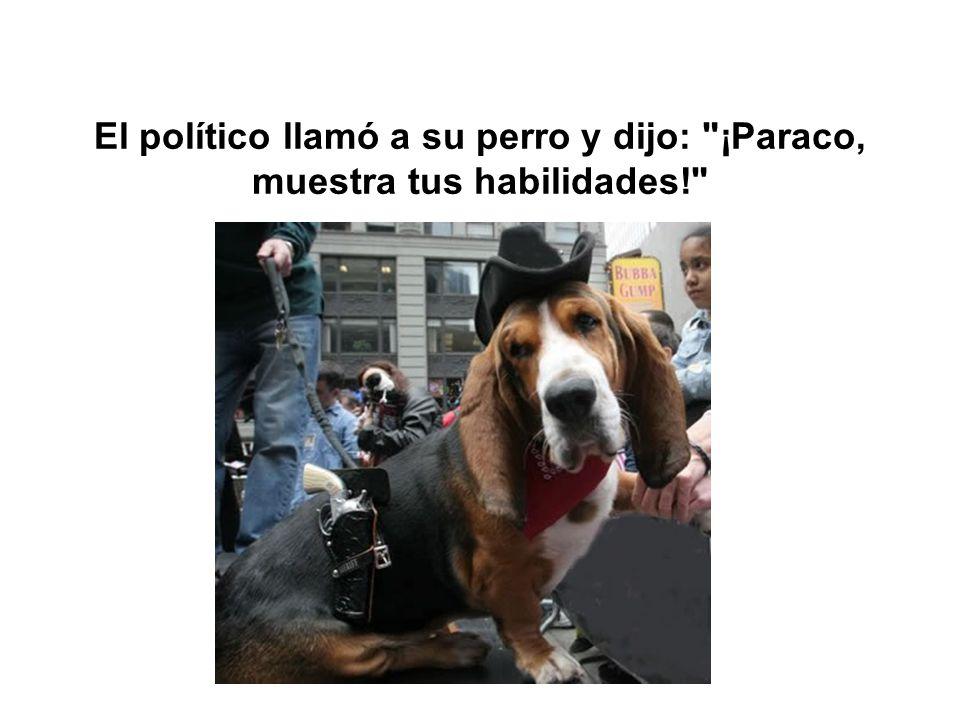 El político llamó a su perro y dijo: ¡Paraco, muestra tus habilidades