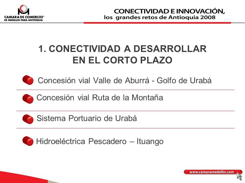 1. CONECTIVIDAD A DESARROLLAR EN EL CORTO PLAZO