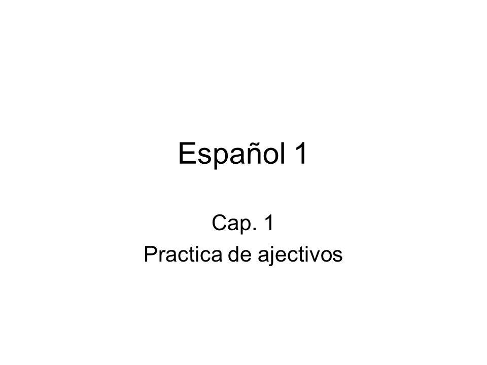 Cap. 1 Practica de ajectivos