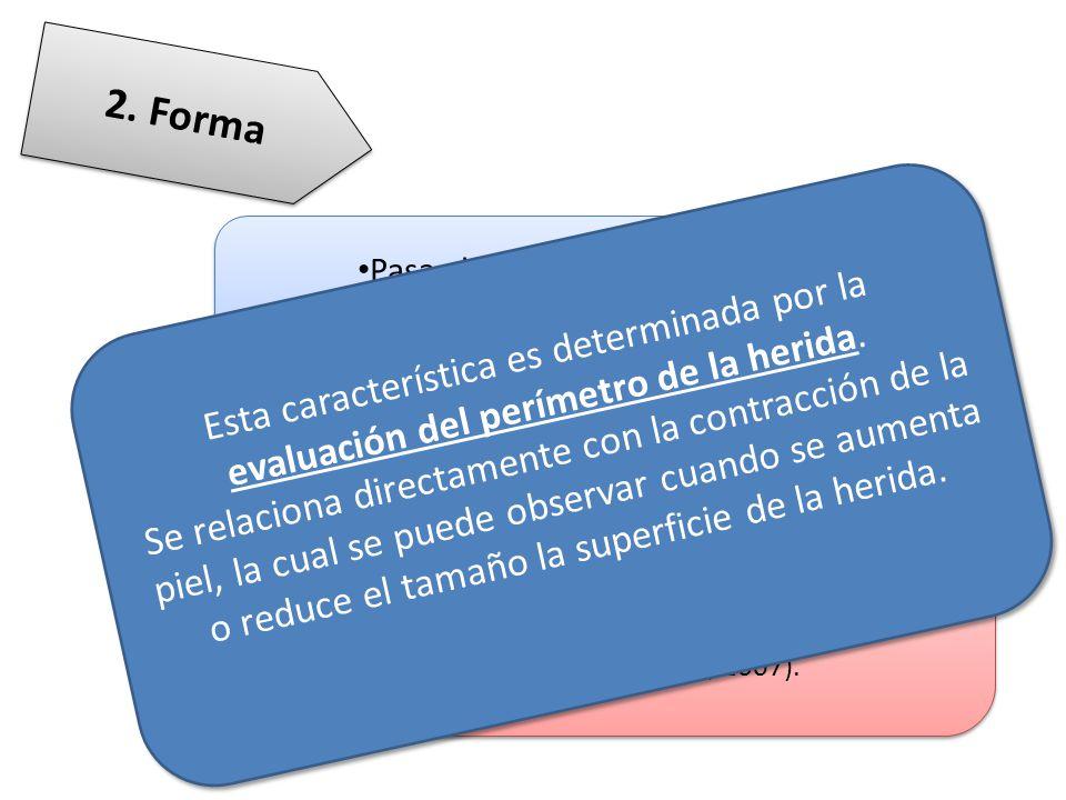 2. Forma Pasa el tiempo / cambia la forma. Forma redonda /oval. Ayuda a determinar el tamaño de la herida.