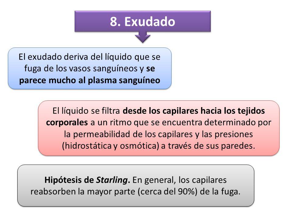 8. Exudado El exudado deriva del líquido que se fuga de los vasos sanguíneos y se parece mucho al plasma sanguíneo.