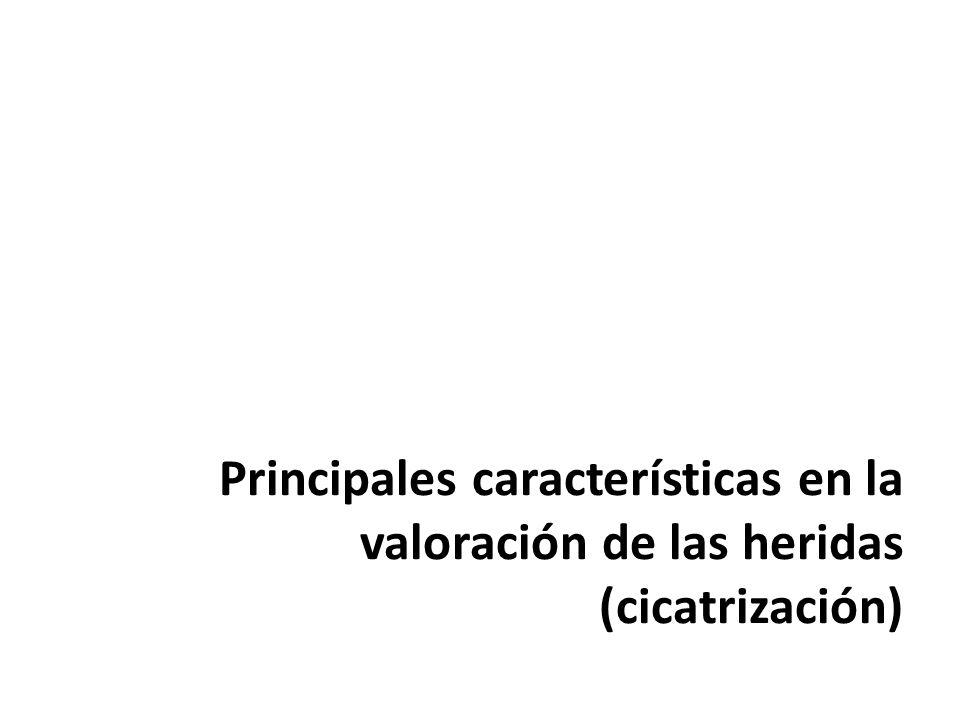 Principales características en la valoración de las heridas (cicatrización)