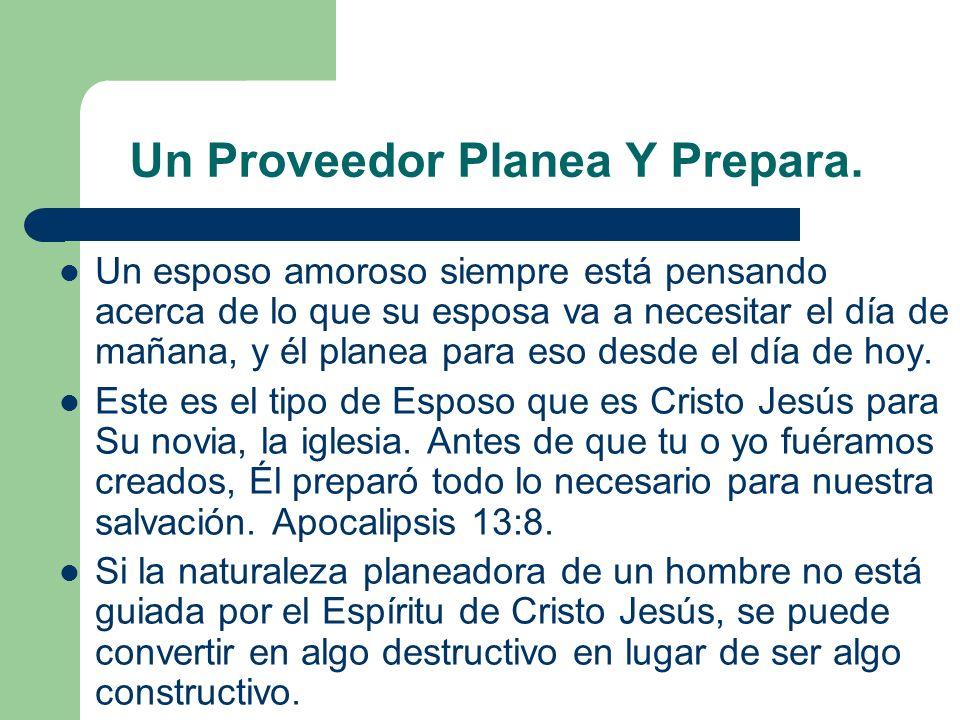 Un Proveedor Planea Y Prepara.