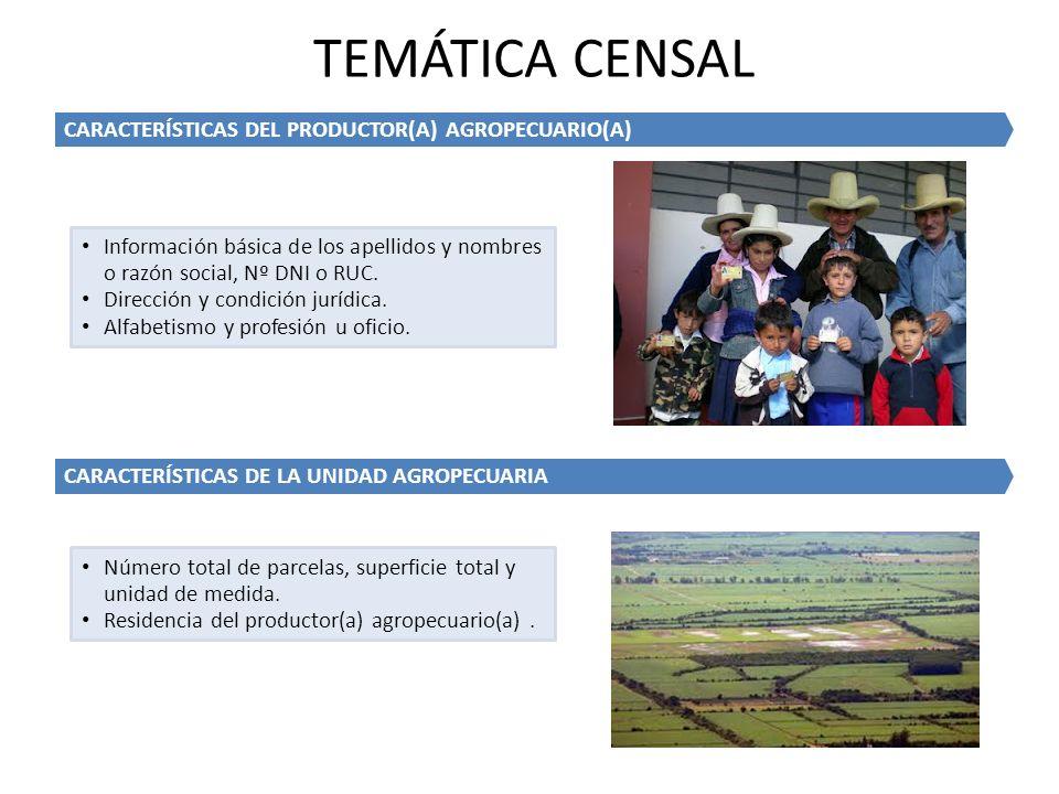 TEMÁTICA CENSAL CARACTERÍSTICAS DEL PRODUCTOR(A) AGROPECUARIO(A)