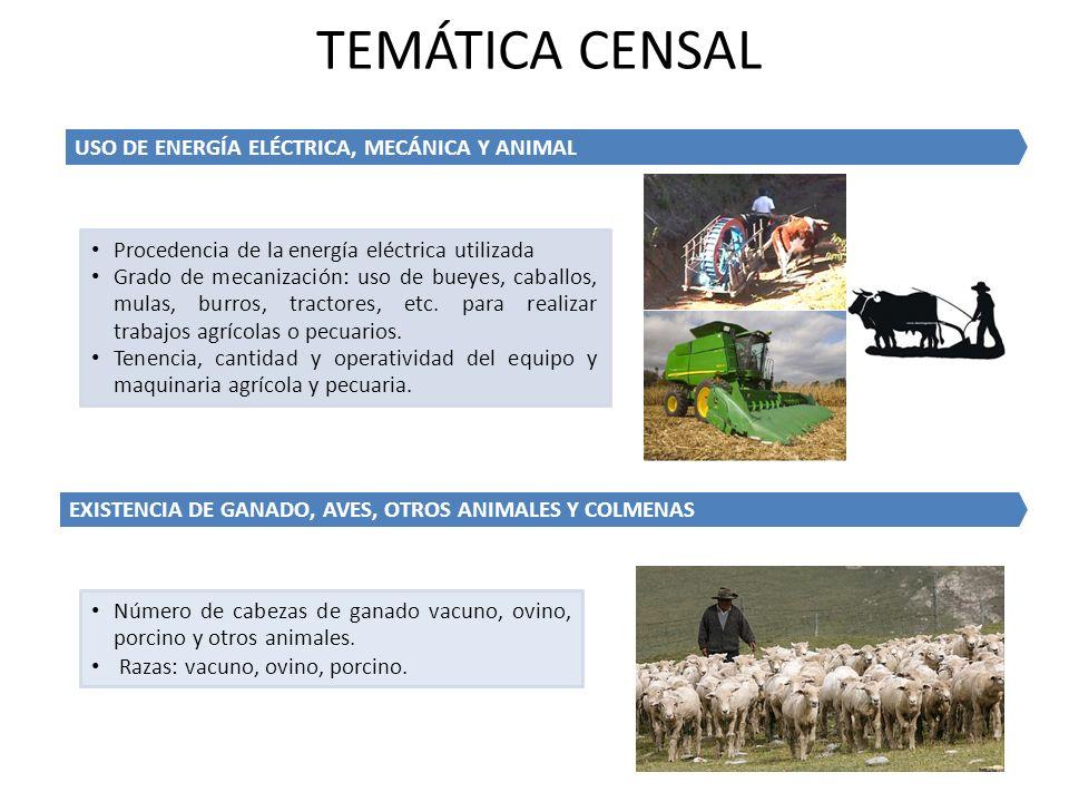 TEMÁTICA CENSAL USO DE ENERGÍA ELÉCTRICA, MECÁNICA Y ANIMAL