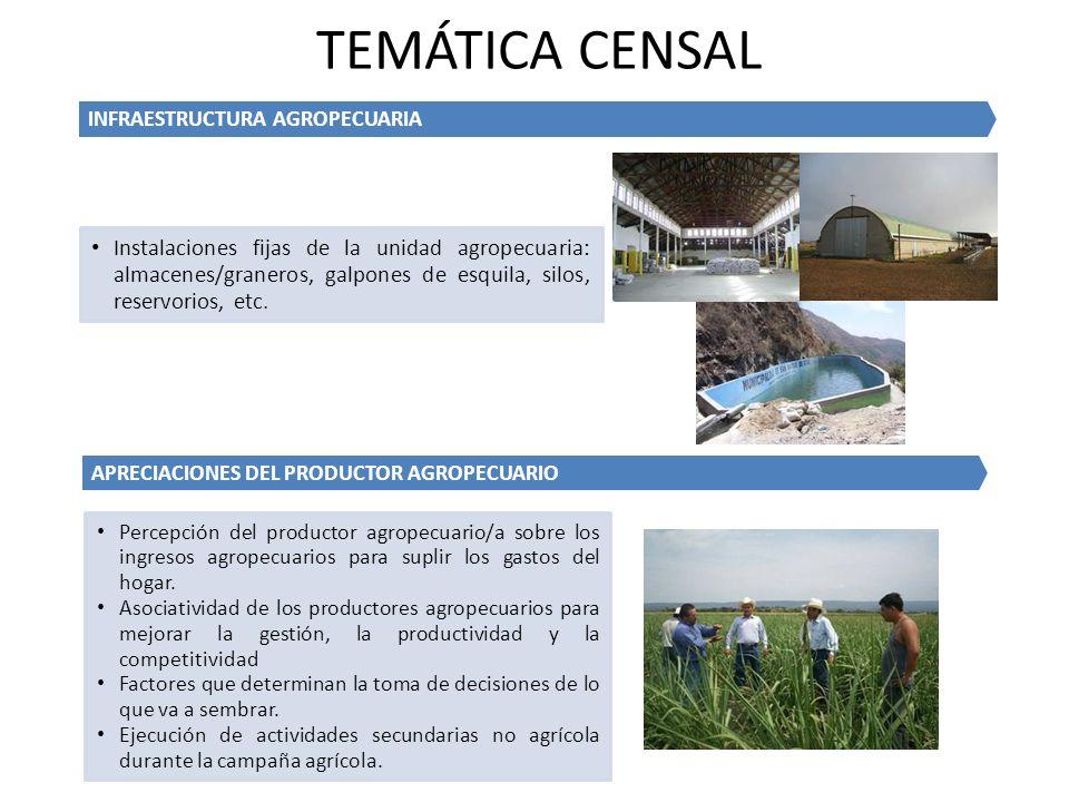 TEMÁTICA CENSAL INFRAESTRUCTURA AGROPECUARIA.