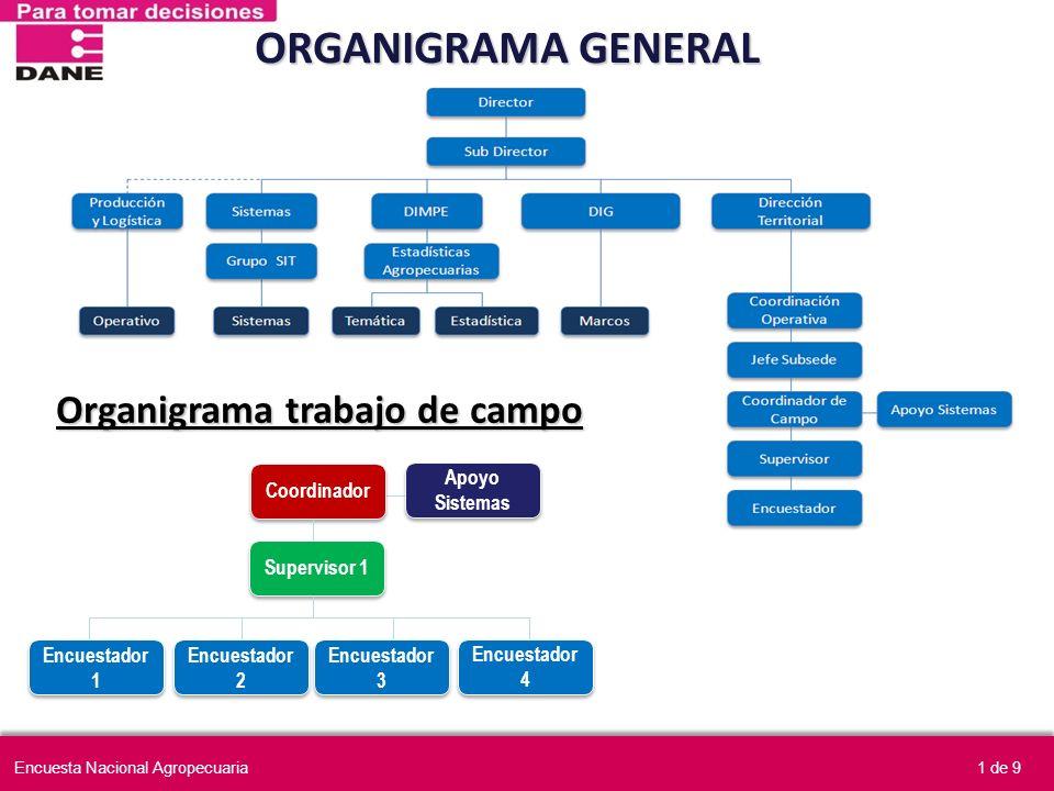 ORGANIGRAMA GENERAL Organigrama trabajo de campo Coordinador