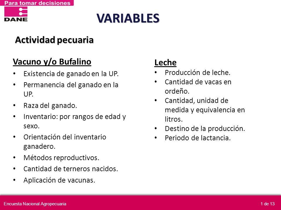 VARIABLES Actividad pecuaria Vacuno y/o Bufalino Leche