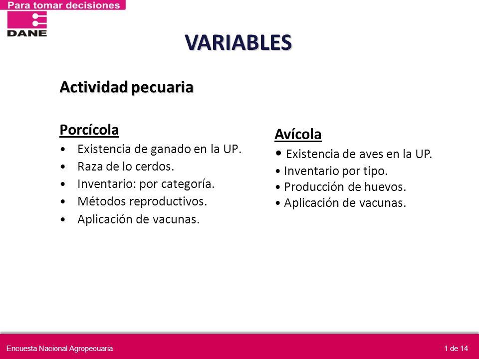 VARIABLES Actividad pecuaria Porcícola Avícola