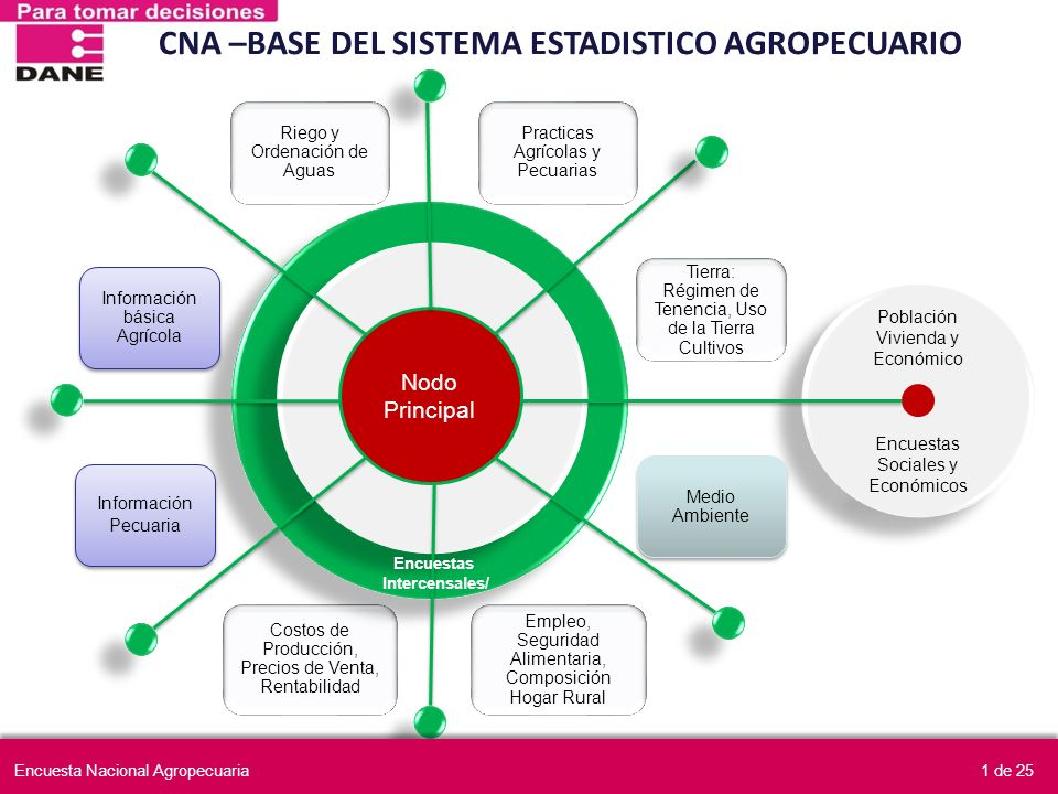 CNA –BASE DEL SISTEMA ESTADISTICO AGROPECUARIO