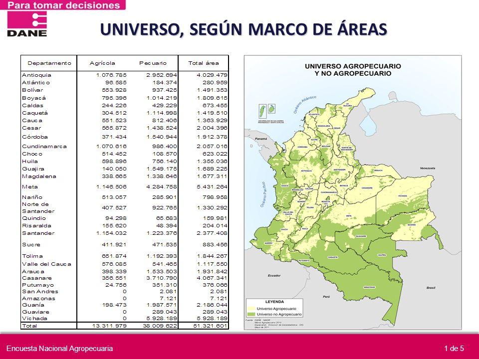UNIVERSO, SEGÚN MARCO DE ÁREAS