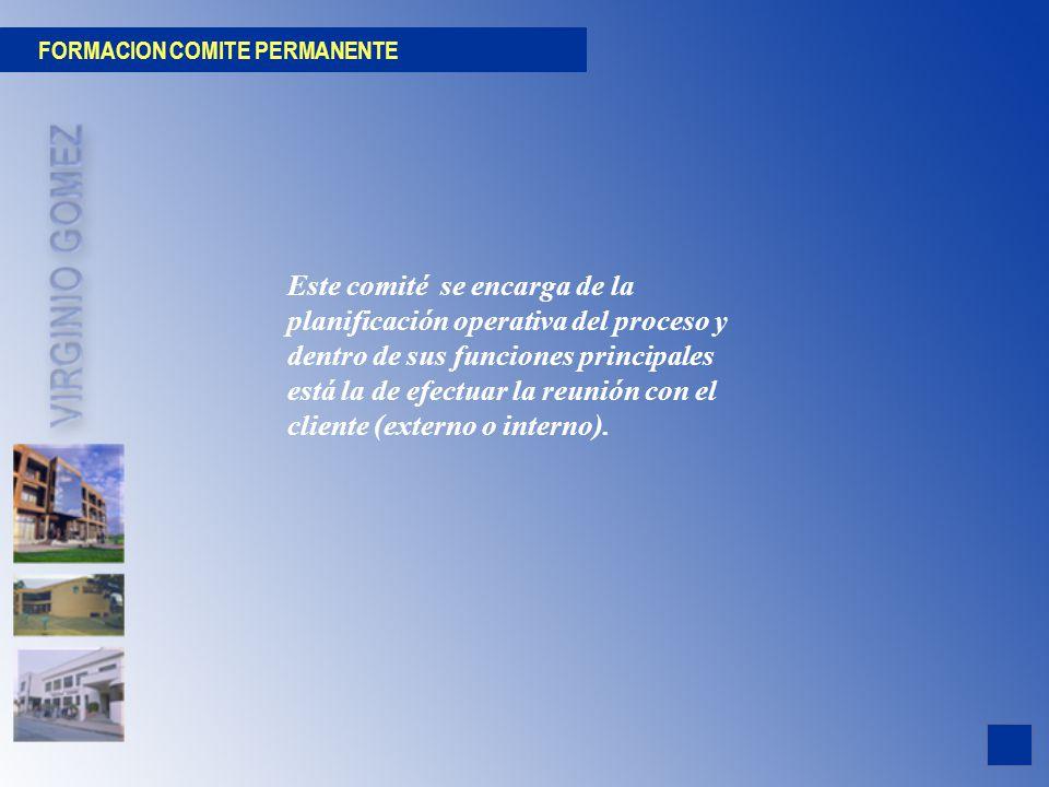 FORMACION COMITE PERMANENTE