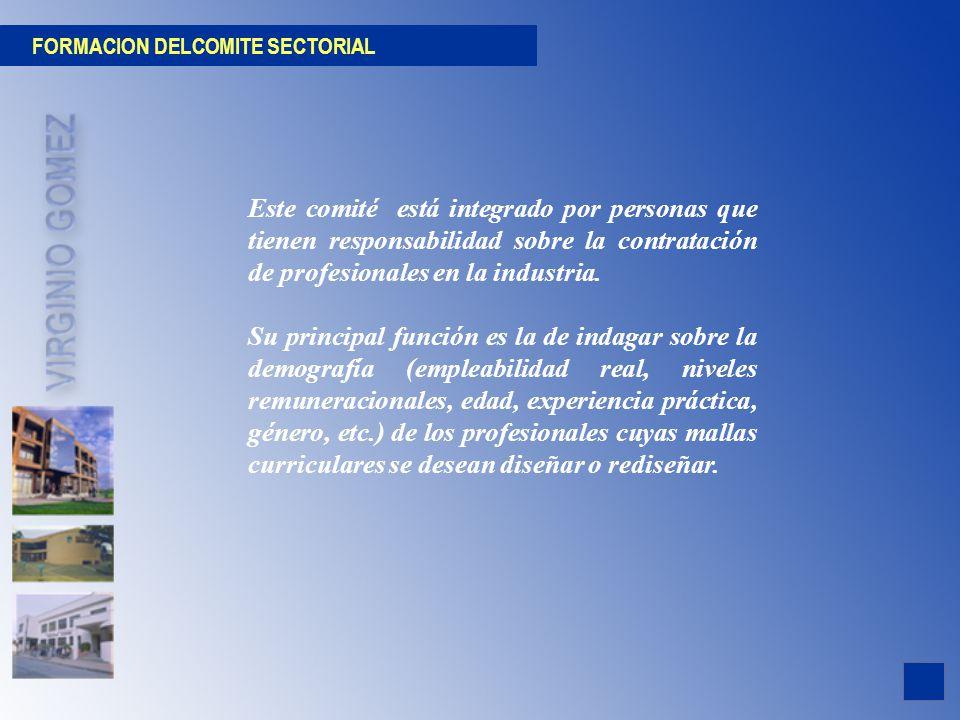 FORMACION DELCOMITE SECTORIAL