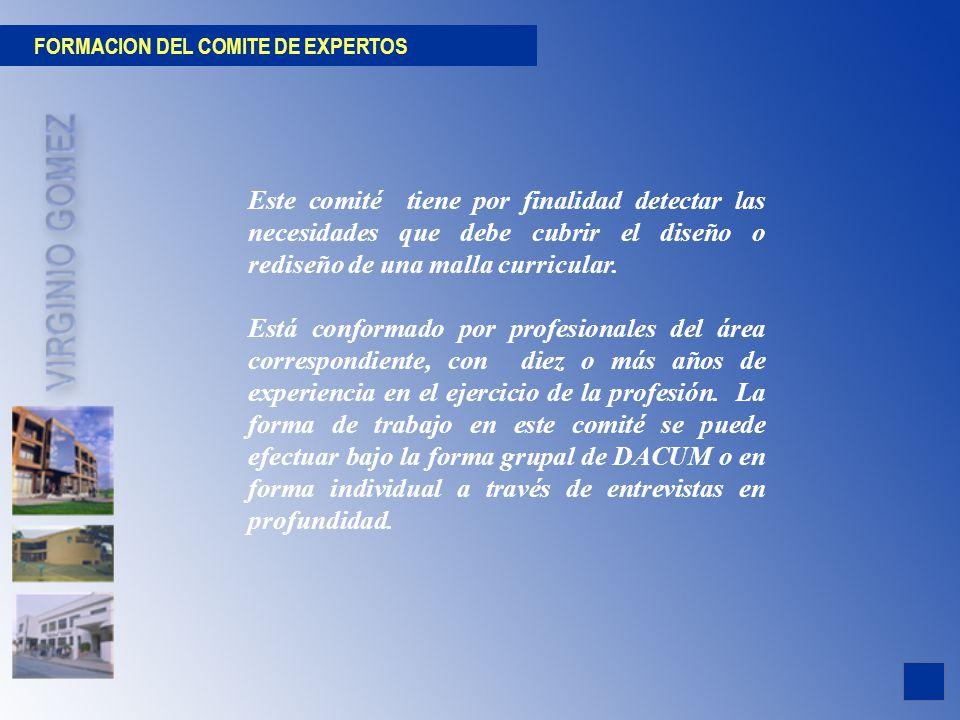 FORMACION DEL COMITE DE EXPERTOS