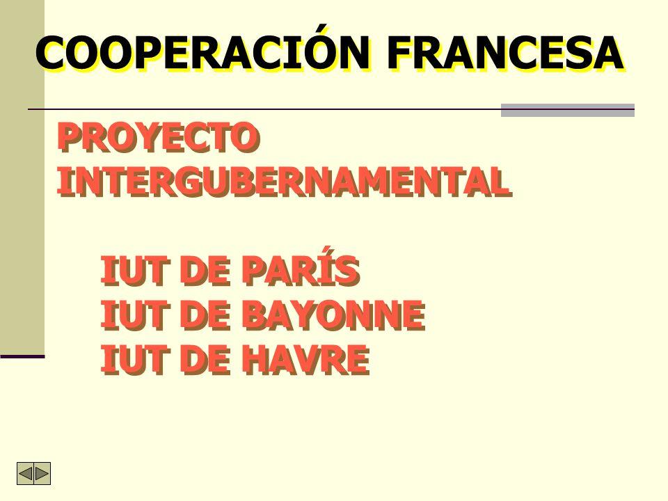 COOPERACIÓN FRANCESA PROYECTO INTERGUBERNAMENTAL IUT DE PARÍS