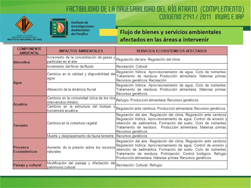 SERVICIOS ECOSISTEMICOS AFECTADOS