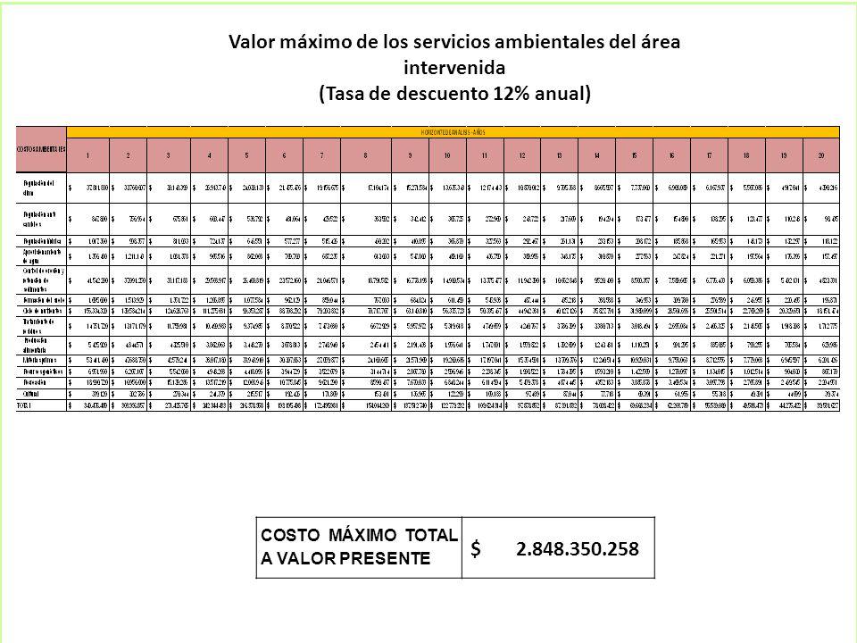 Valor máximo de los servicios ambientales del área intervenida