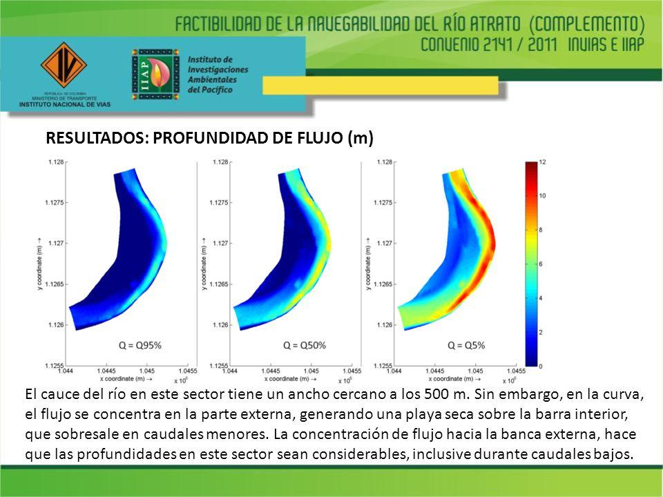RESULTADOS: PROFUNDIDAD DE FLUJO (m)