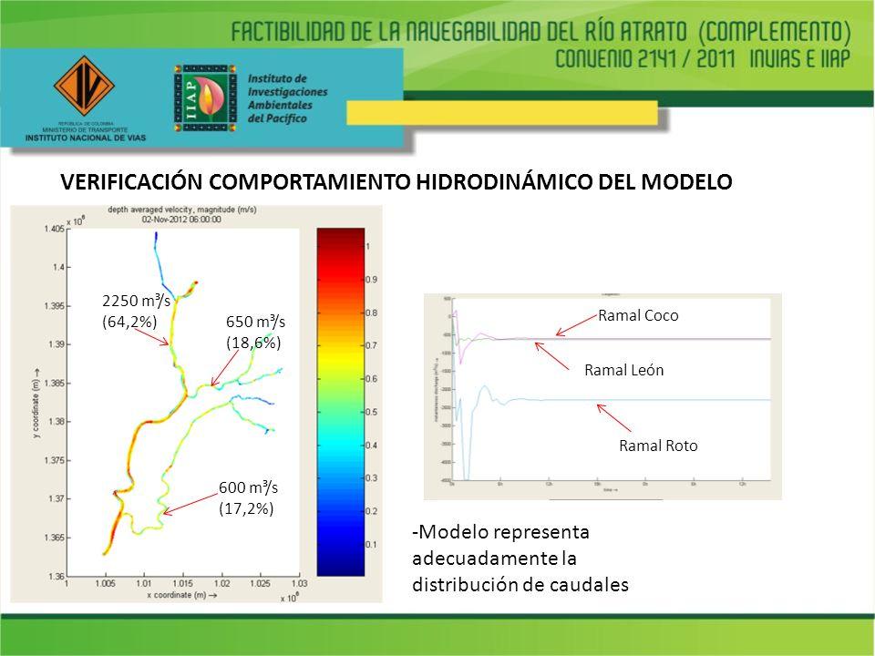 VERIFICACIÓN COMPORTAMIENTO HIDRODINÁMICO DEL MODELO