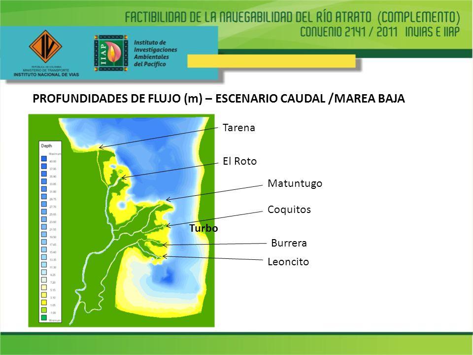 PROFUNDIDADES DE FLUJO (m) – ESCENARIO CAUDAL /MAREA BAJA