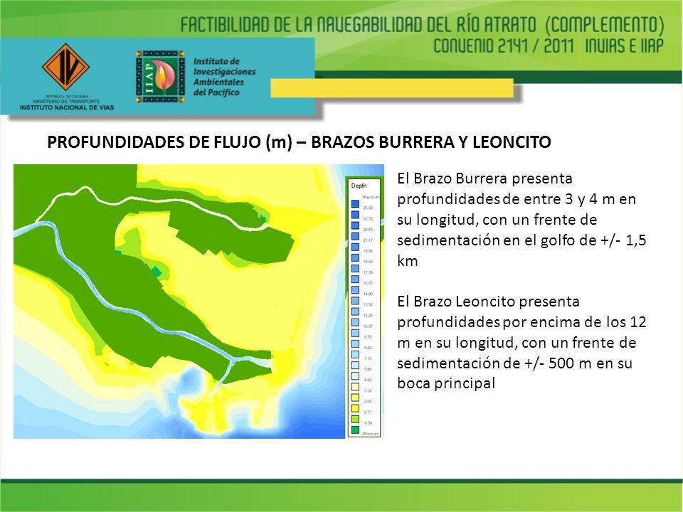 PROFUNDIDADES DE FLUJO (m) – BRAZOS BURRERA Y LEONCITO