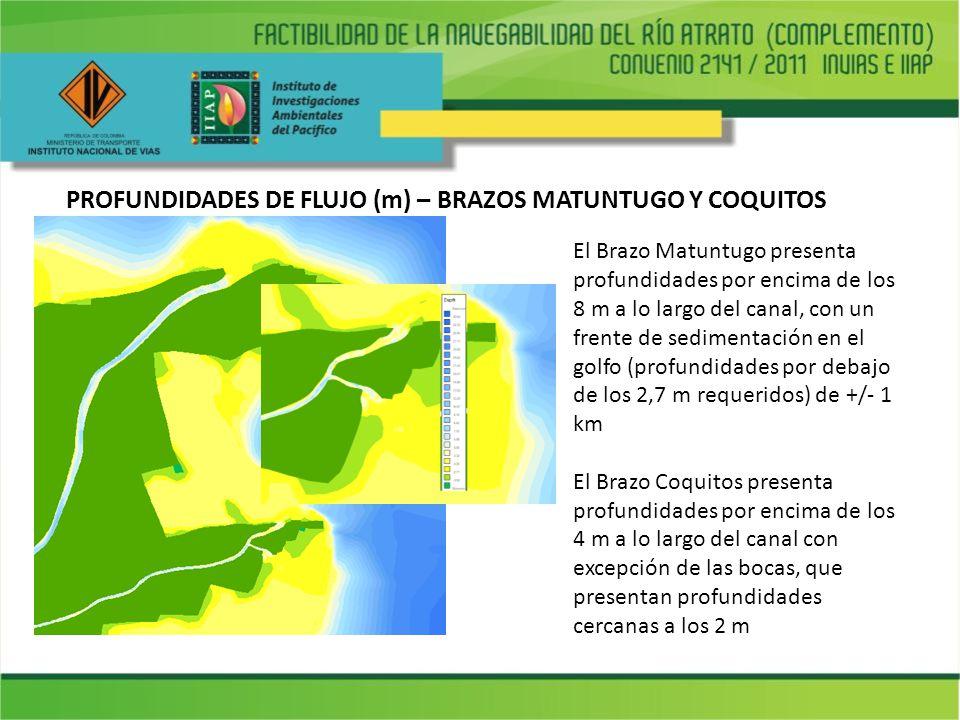 PROFUNDIDADES DE FLUJO (m) – BRAZOS MATUNTUGO Y COQUITOS