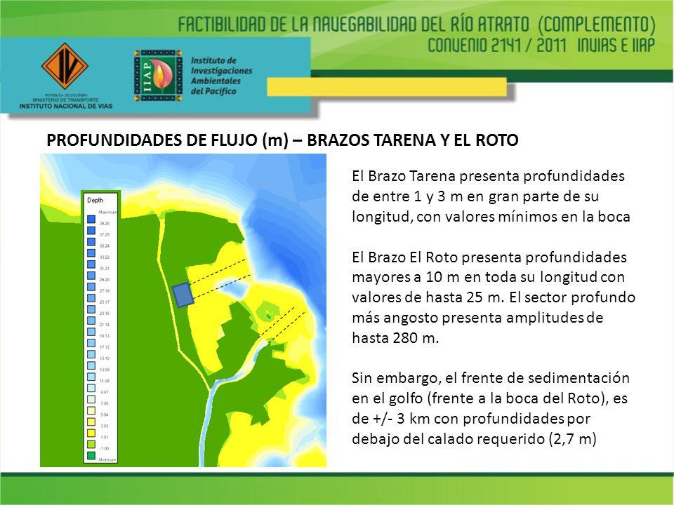 PROFUNDIDADES DE FLUJO (m) – BRAZOS TARENA Y EL ROTO