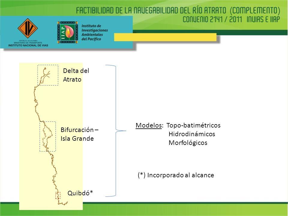 Delta del Atrato Modelos: Topo-batimétricos. Hidrodinámicos. Morfológicos. Bifurcación – Isla Grande.