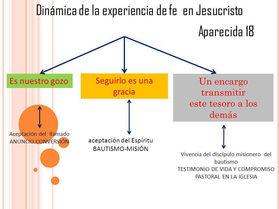 Dinámica de la experiencia de fe en Jesucristo
