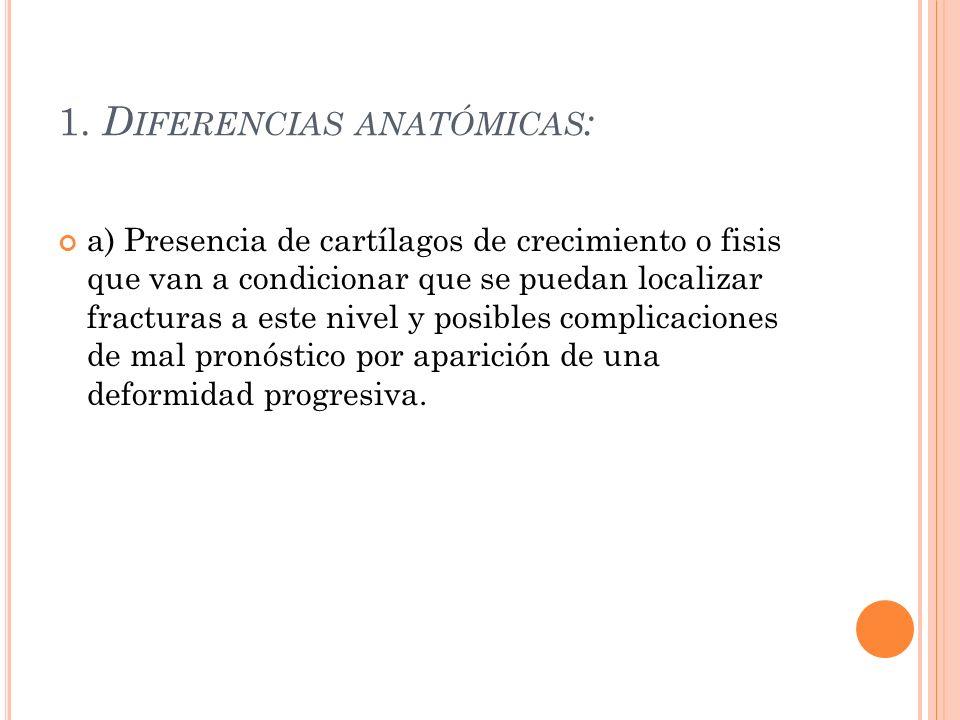 1. Diferencias anatómicas: