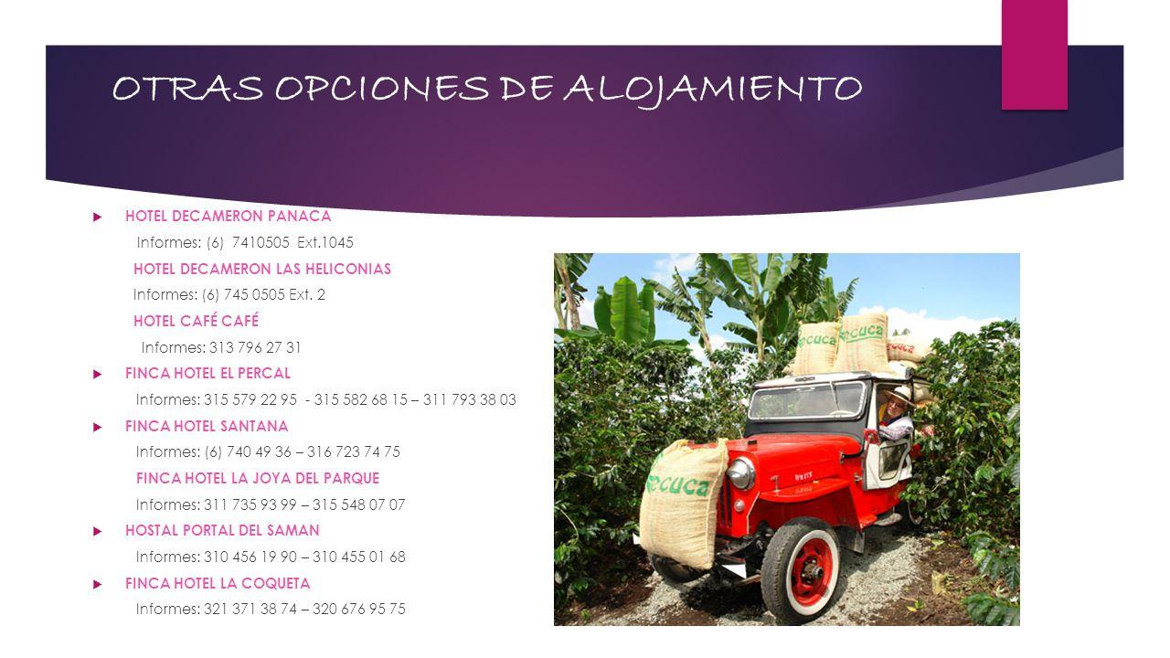 OTRAS OPCIONES DE ALOJAMIENTO