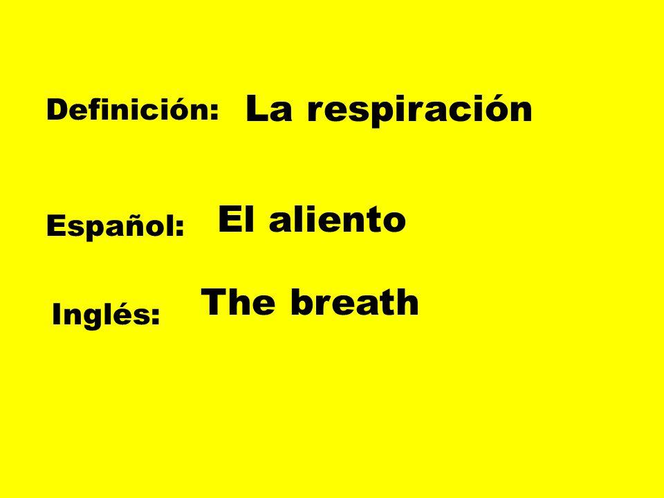 La respiración Definición: El aliento Español: The breath Inglés: