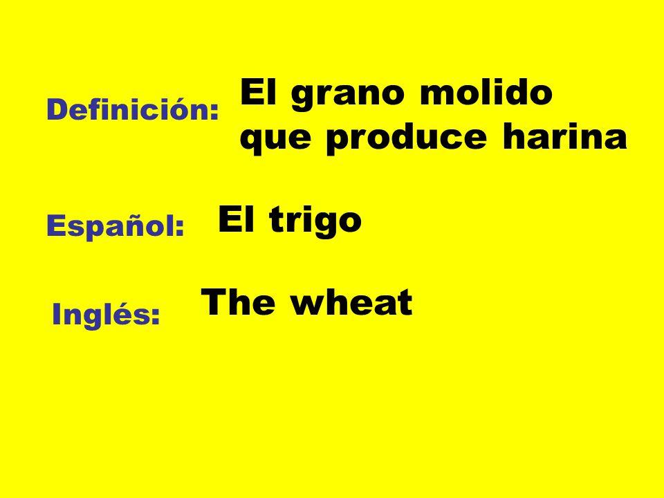 El grano molido que produce harina