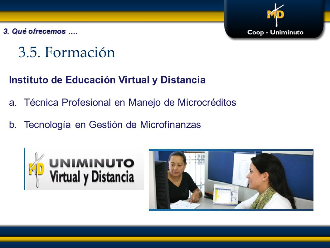3.5. Formación Instituto de Educación Virtual y Distancia