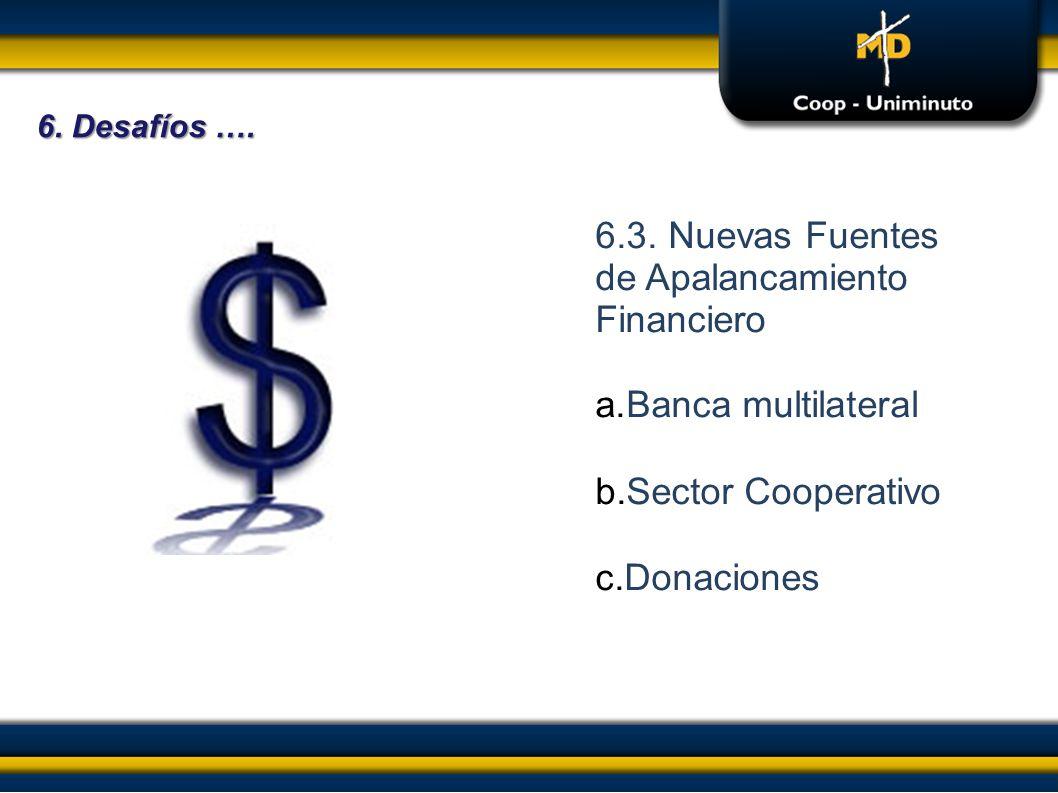 6.3. Nuevas Fuentes de Apalancamiento Financiero
