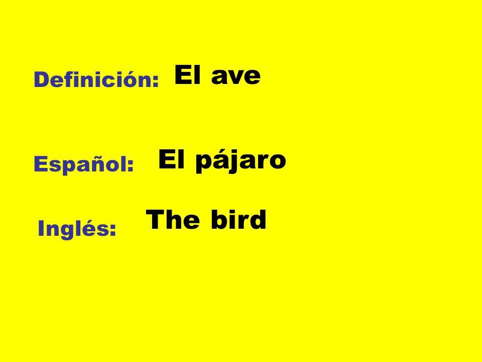 El ave Definición: El pájaro Español: The bird Inglés: