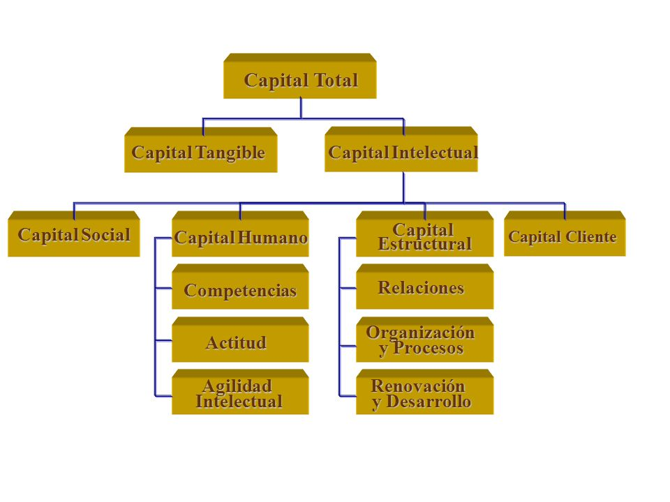 Capital Total Capital Tangible Capital Intelectual Capital Social