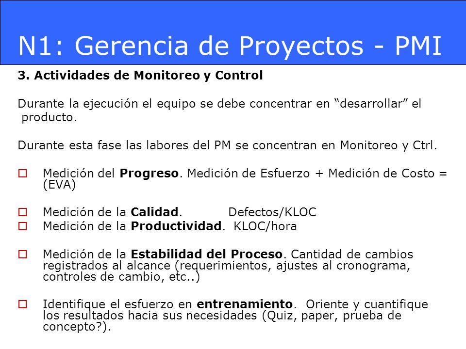 N1: Gerencia de Proyectos - PMI