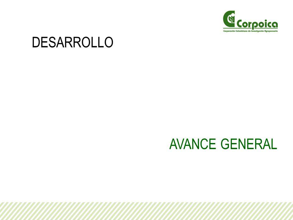 DESARROLLO AVANCE GENERAL