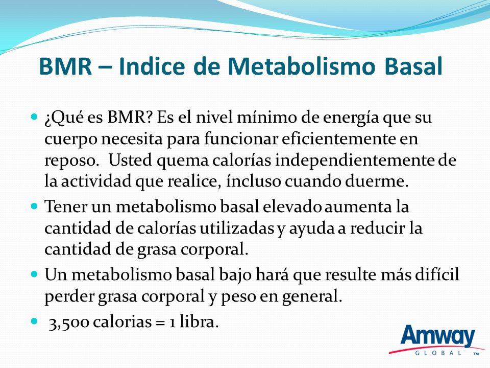 BMR – Indice de Metabolismo Basal