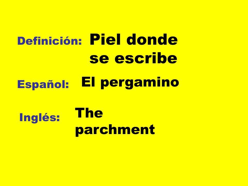 Piel donde se escribe El pergamino The parchment Definición: Español: