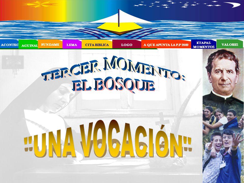 TERCER MOMENTO: EL BOSQUE