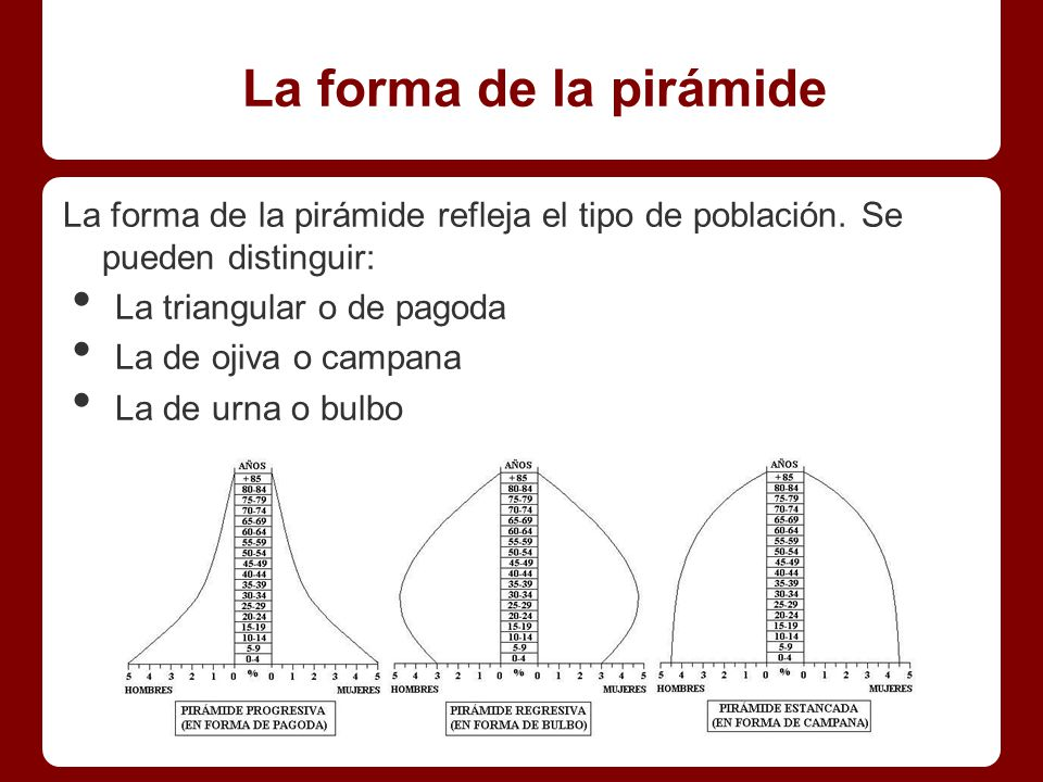 La forma de la pirámide La forma de la pirámide refleja el tipo de población. Se pueden distinguir: